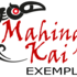Bioblitz Mahinga Kai Exemplar icon