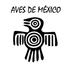 Aves de México icon