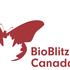 BioBlitz Canada Calgary - Weaselhead icon