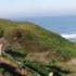 Fort Funston Bioblitz icon