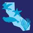 Snapshot Cal Coast 2017: Pillar Point Reef bioblitz icon