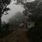 1302 sd in cloud