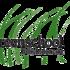 Green School Field Guide icon