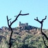 Mt. Diablo, Morgan Fire 2013 icon