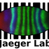 Jaeger lab biodiversity hunt icon