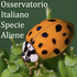 Osservatorio Italiano Specie Aliene icon