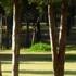 Parque Naucalli, Naucalpan, Estado de México icon