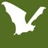 Global Bat Watch icon