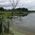 Buchtel CLC, Panzner Wetland icon