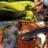 Salamander project