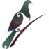Kaupapa Kererū: Banks Peninsula kereru community count icon