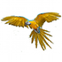 Birds of the World icon