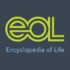 Rocky Mountain Mammals EOL Collection icon