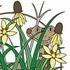 Ojibway Prairie BioBlitz 2015 icon