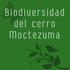 Biodiversidad del Cerro Moctezuma icon