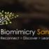 Bioblitz of the Americas - Torrey Pines, CA 2016 icon