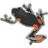 HerpetoGasy BioBlitz icon