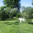 il mio giardino icon