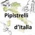 Pipistrelli d'Italia icon