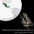 Aves rapaces nocturnas de México icon