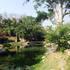 Río Cuautla, Morelos icon