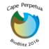 The Cape Perpetua BioBlitz Series icon