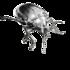 Artrópodos Argentinos icon